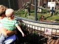zoo 2016_08_19_101