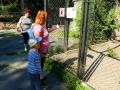 zoo 2016_08_19_111