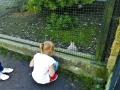 zoo 2016_08_19_44