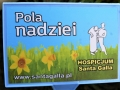 sadzeniezonkili-2020-11-30_59