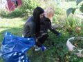 ogrod-2021-09-28_19
