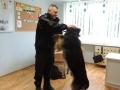 policja z psem_05_28_2015_50.JPG