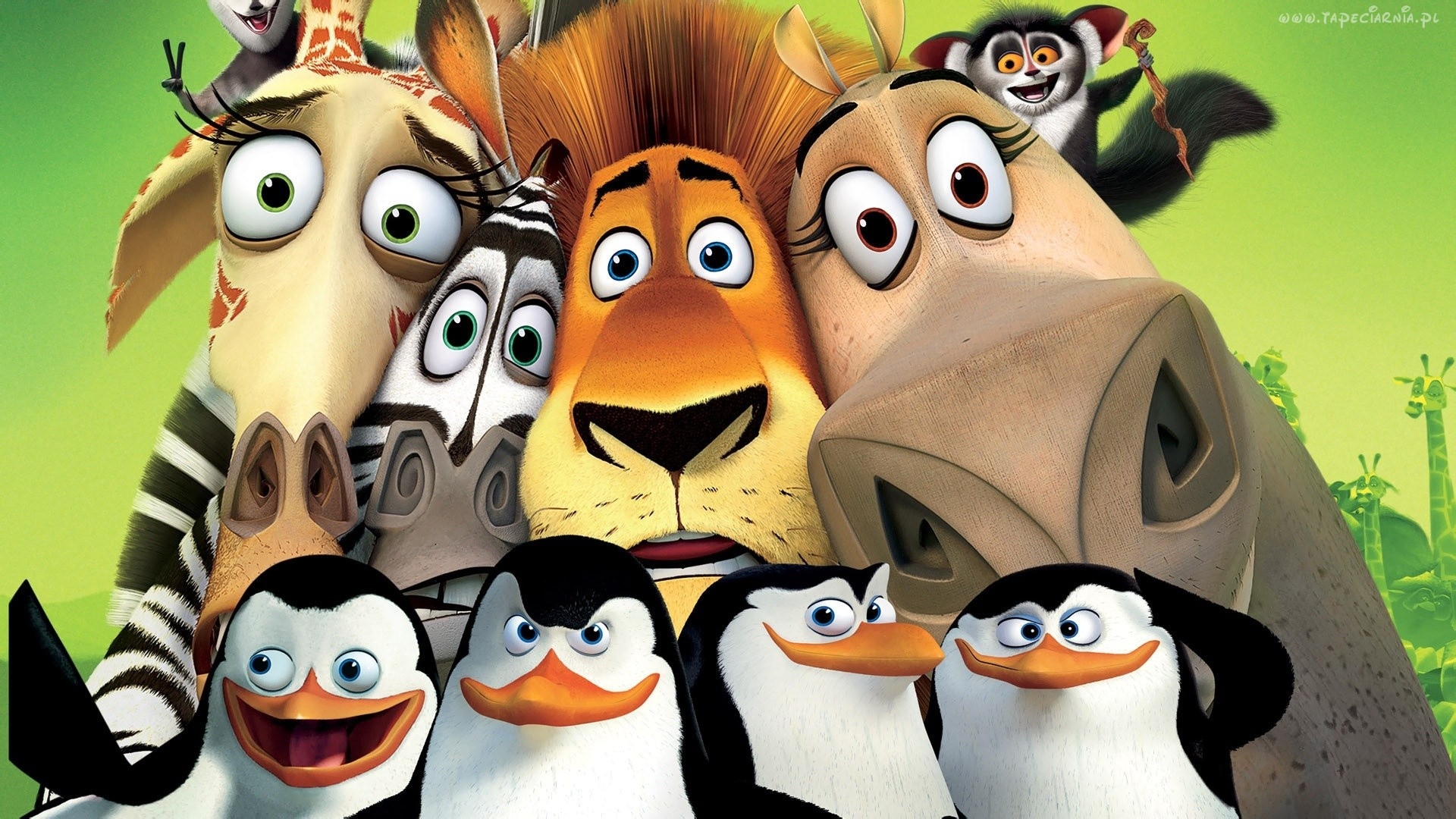 2014/2015 – Wycieczka do zoo