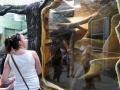 zoo 2016_08_19_79