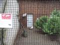 wycieczka - zoo_10_20_201436.JPG