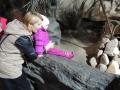 wycieczka - zoo_10_20_201478.JPG